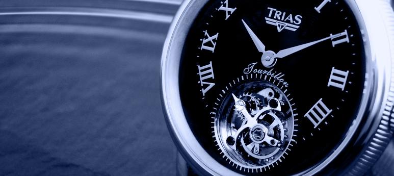 Foto von: http://www.trias-watch.com/